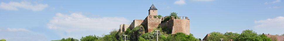 Deutsch-Französische Gesellschaft Halle e.V. header image 1